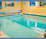 2. Confined Water Training (Pool sessions)